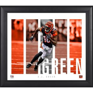 "Cincinnati Bengals A.J. Green Fanatics Authentic Framed 15"" x 17"" Player Panel Collage"