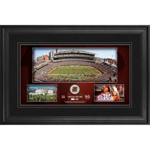 Cincinnati Bengals Framed 10″ x 18″ Stadium Panoramic Collage with Game-Used Football